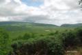[北海道][雨竜沼湿原]展望台から望む雨竜沼湿原