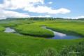 [北海道][雨竜沼湿原]雨竜沼湿原を流れるペンケペタン川
