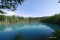 [北海道][美瑛][十勝岳連峰]青い池