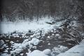[北海道][冬景色]見市川