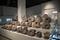 アンモナイト化石実物 @三笠市立博物館