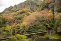 [島根県]立久恵峡 不老橋