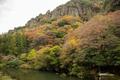 [島根県]立久恵峡 不老橋から対岸を望む