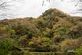 [島根県]立久恵峡 対岸から国道184号方向を望む
