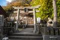 [島根県]龍御前神社