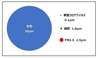 f:id:Thaibreeze:20200601202404j:plain