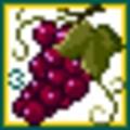 [ぱがね][アイコン][dot]食品-熟赤ブドウ