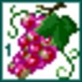 [ぱがね][アイコン][dot]食品-赤ブドウ