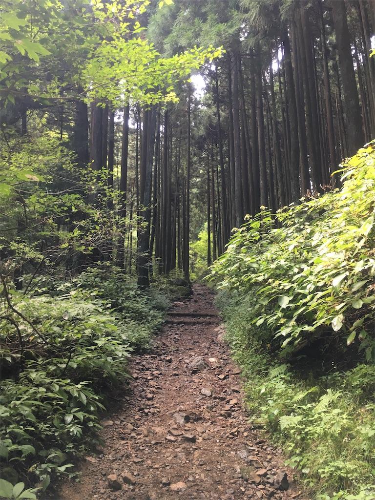 f:id:Thiroyuki:20170924230525j:image
