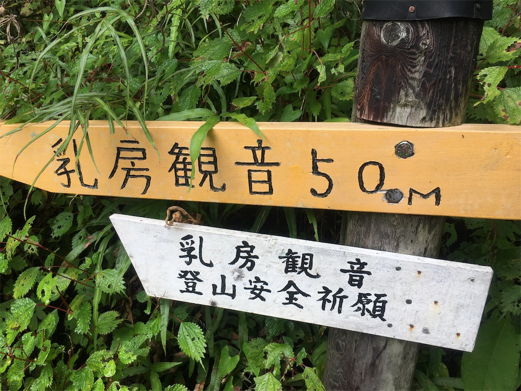 f:id:Thiroyuki:20170930202809j:image