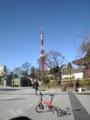 芝公園より東京タワーを望む 元旦