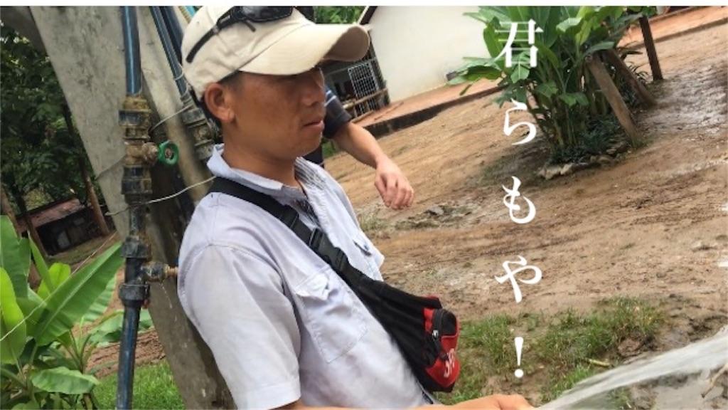 f:id:TokkunNatchan:20180511104359j:image