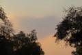 空に偶然できたハート型の雲 20151024