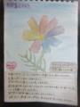 Flower for Takayuki Honda