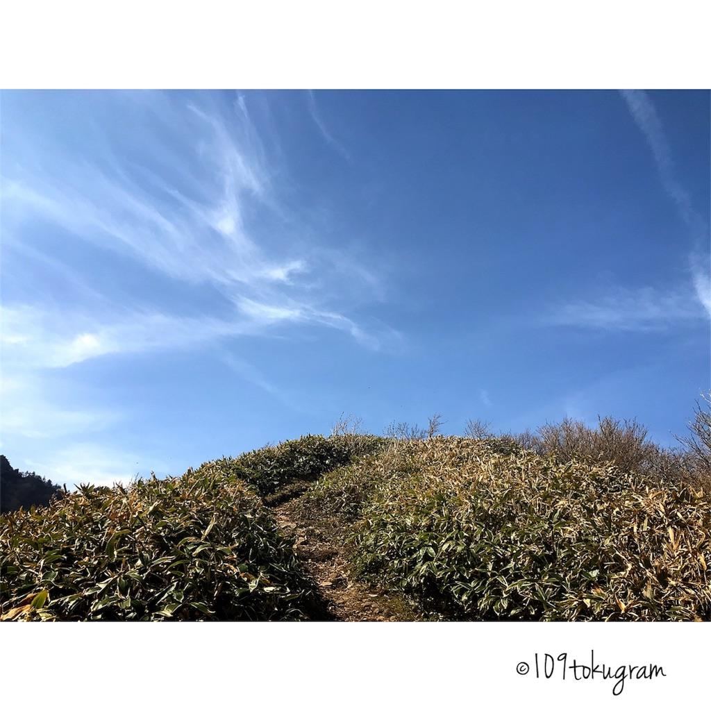 f:id:Toku109:20180616082317j:image