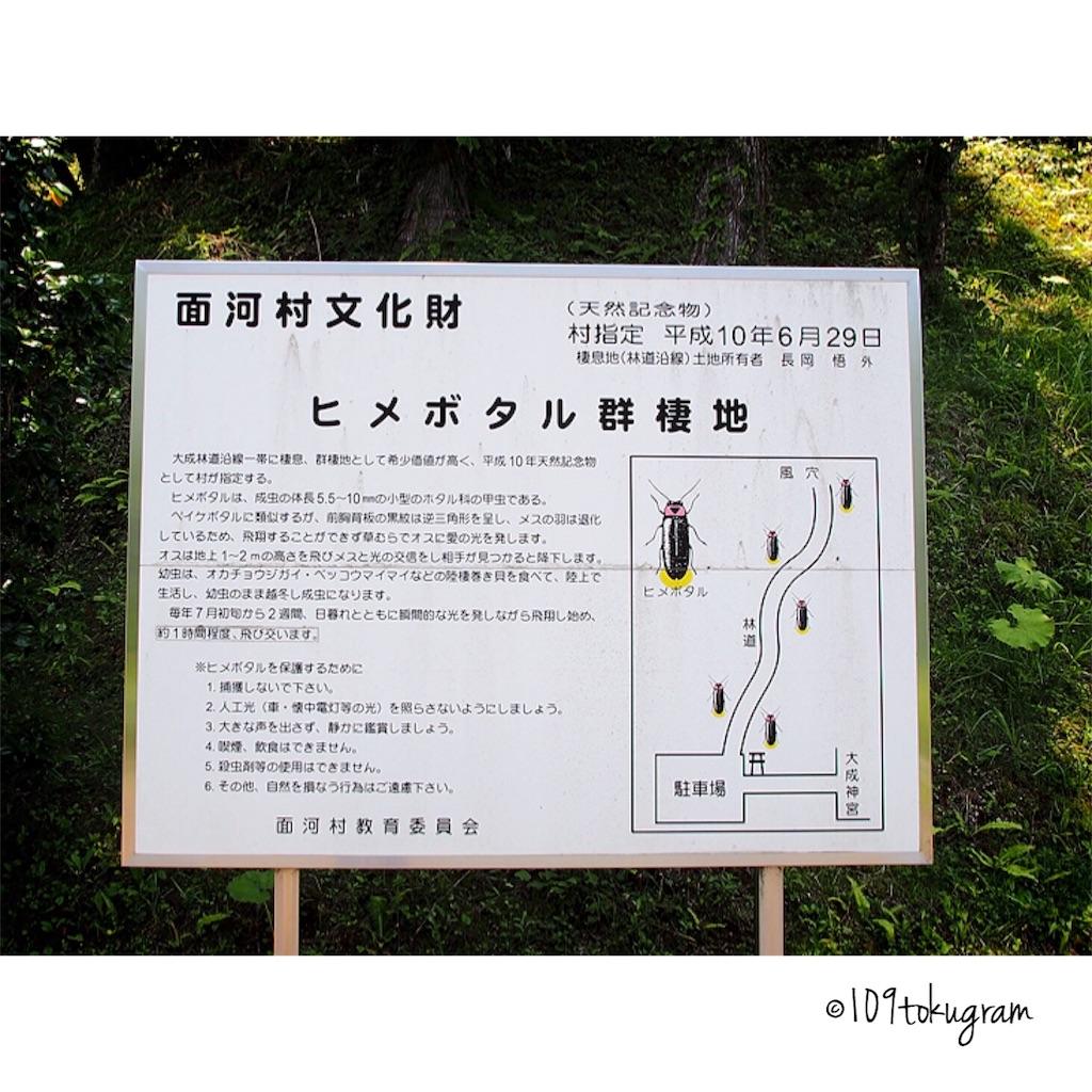 f:id:Toku109:20180704211802j:image