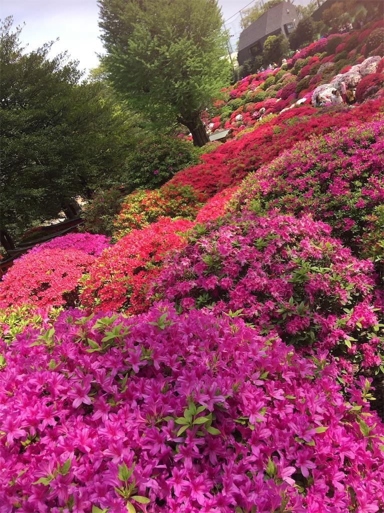 f:id:TokuheiKumagai:20190423185249j:image