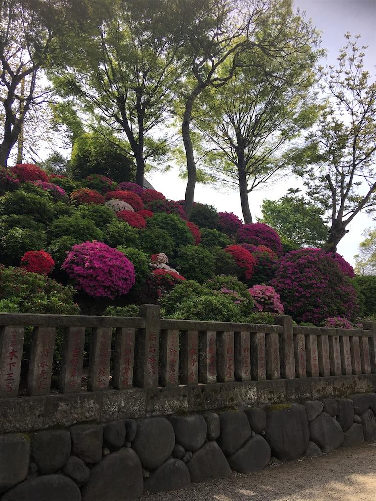 f:id:TokuheiKumagai:20190423185338j:image