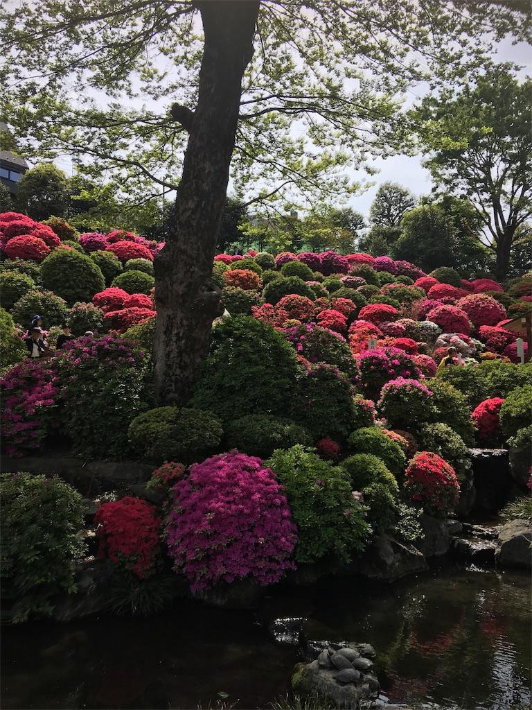 f:id:TokuheiKumagai:20190423185345j:image