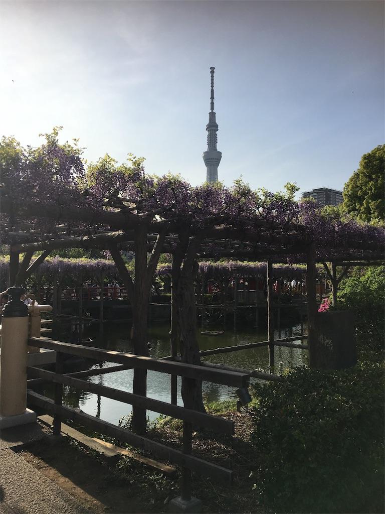 f:id:TokuheiKumagai:20190423210023j:image