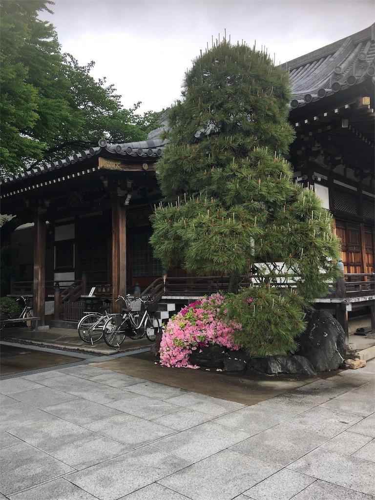 f:id:TokuheiKumagai:20190430162240j:image