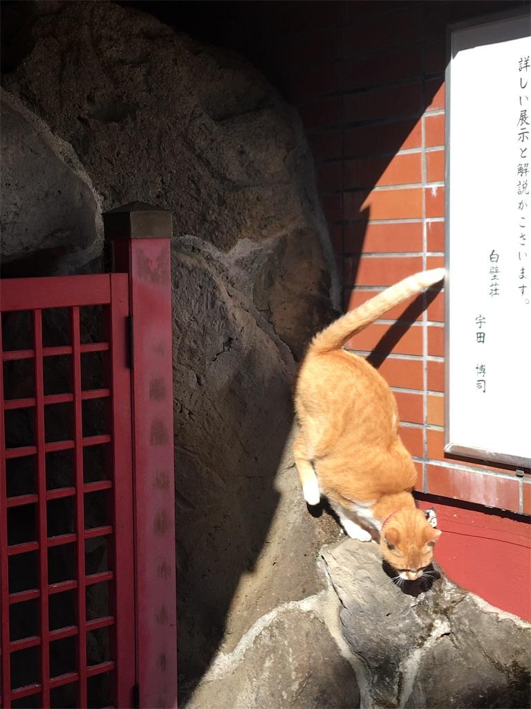 f:id:TokuheiKumagai:20190508205019j:image