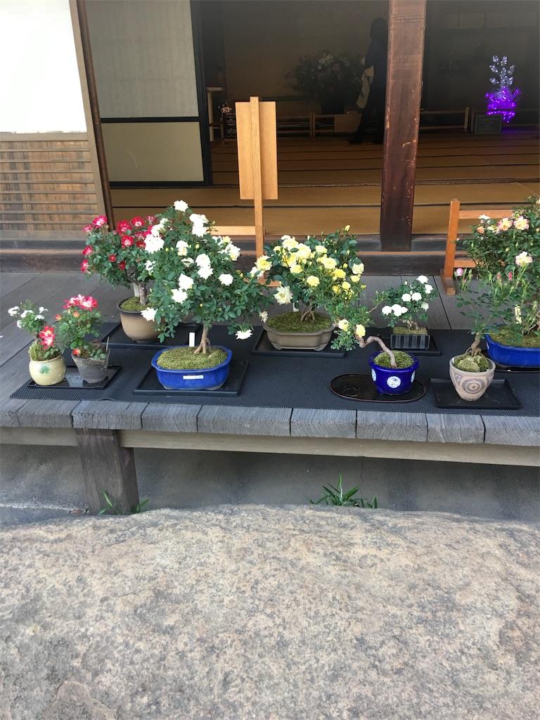 f:id:TokuheiKumagai:20190513234813j:image