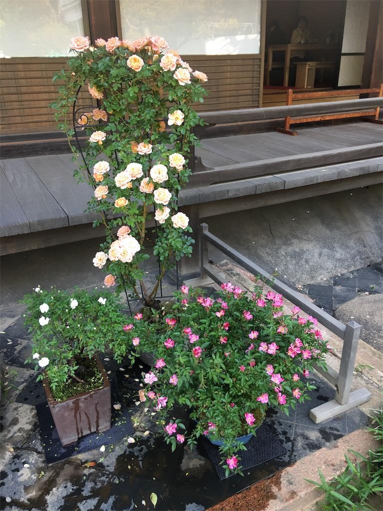 f:id:TokuheiKumagai:20190513235416j:image