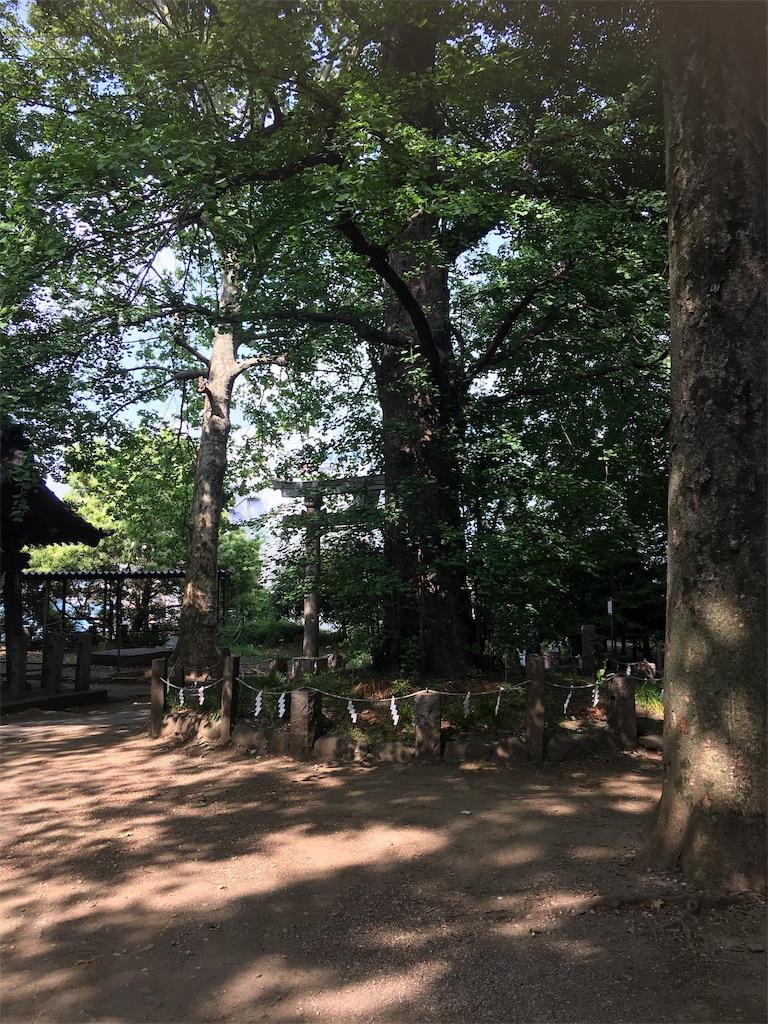 f:id:TokuheiKumagai:20190514003642j:image