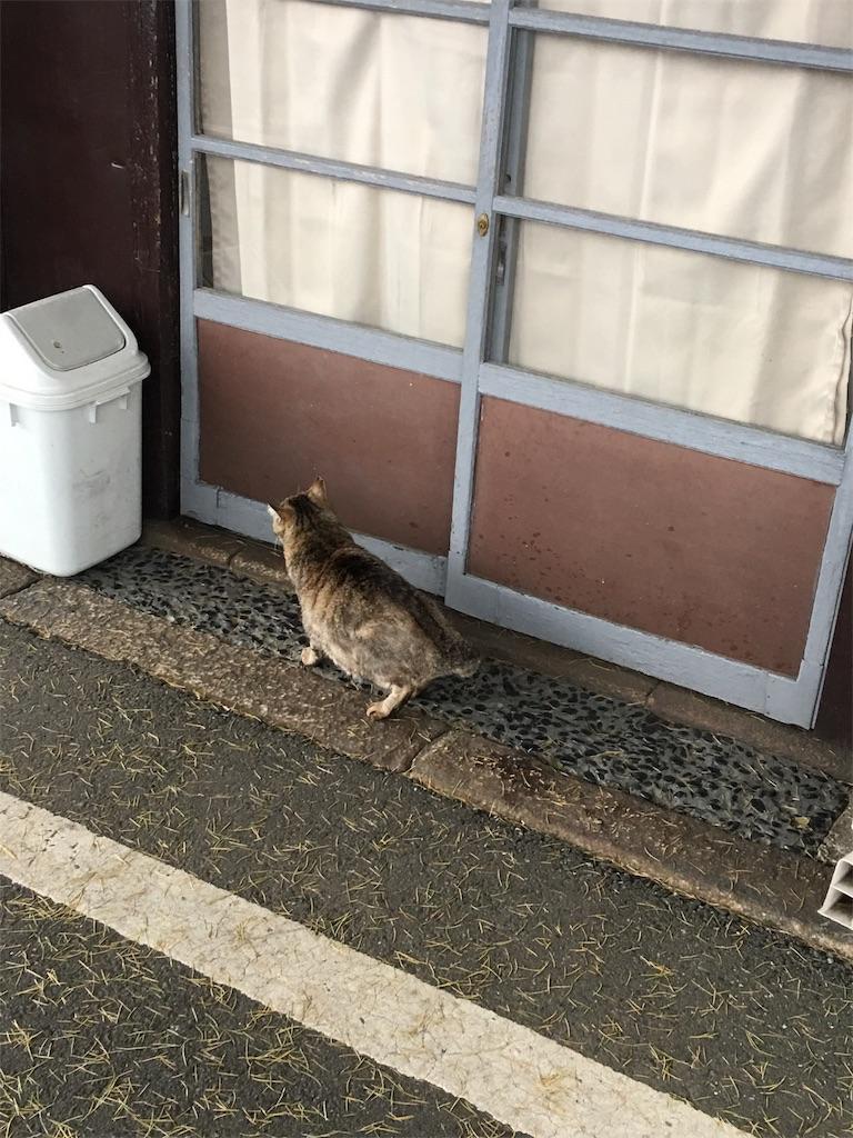 f:id:TokuheiKumagai:20190514221952j:image