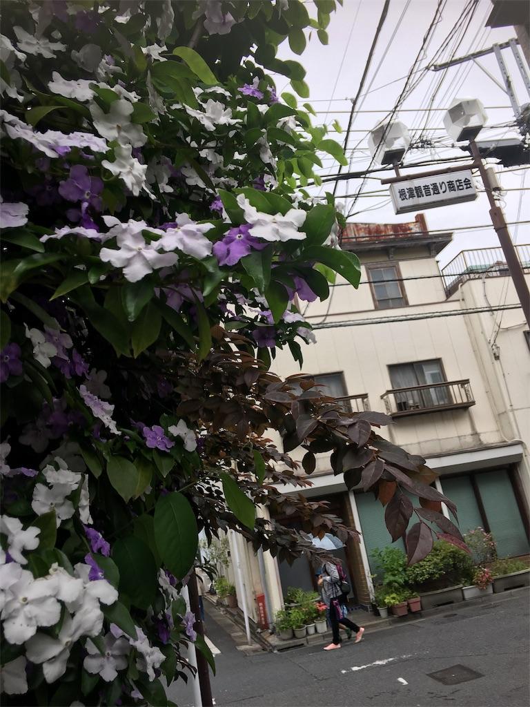 f:id:TokuheiKumagai:20190514221959j:image
