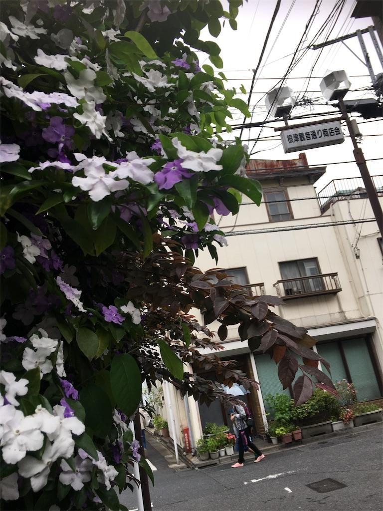 f:id:TokuheiKumagai:20190514222049j:image