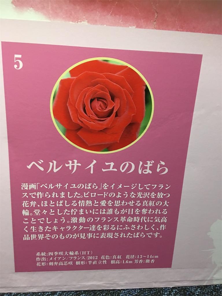 f:id:TokuheiKumagai:20190517223405j:image
