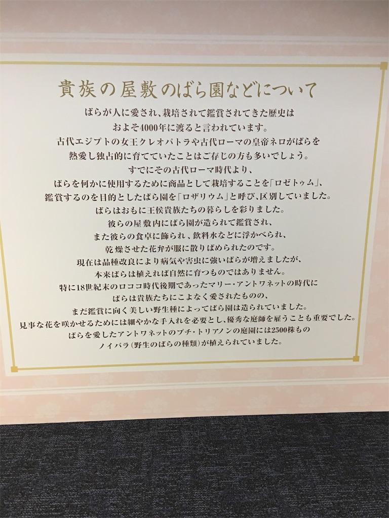 f:id:TokuheiKumagai:20190517223423j:image