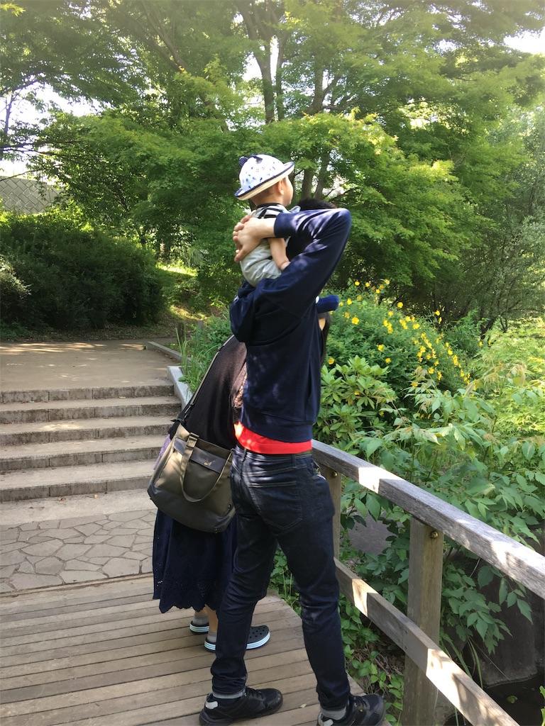 f:id:TokuheiKumagai:20190530205711j:image