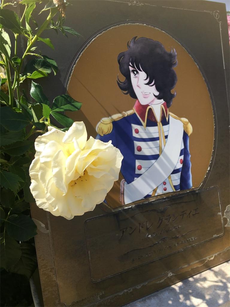 f:id:TokuheiKumagai:20190530210706j:image