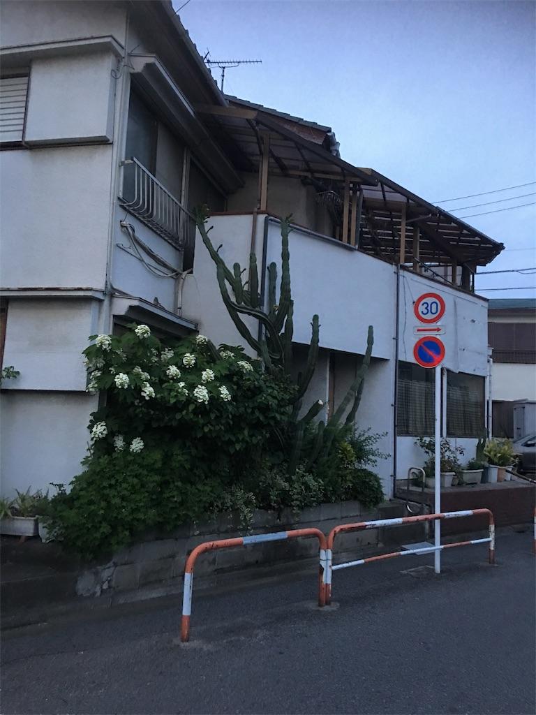 f:id:TokuheiKumagai:20190601212710j:image