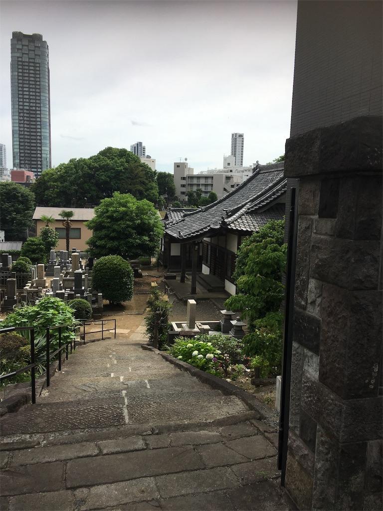 f:id:TokuheiKumagai:20190605214200j:image
