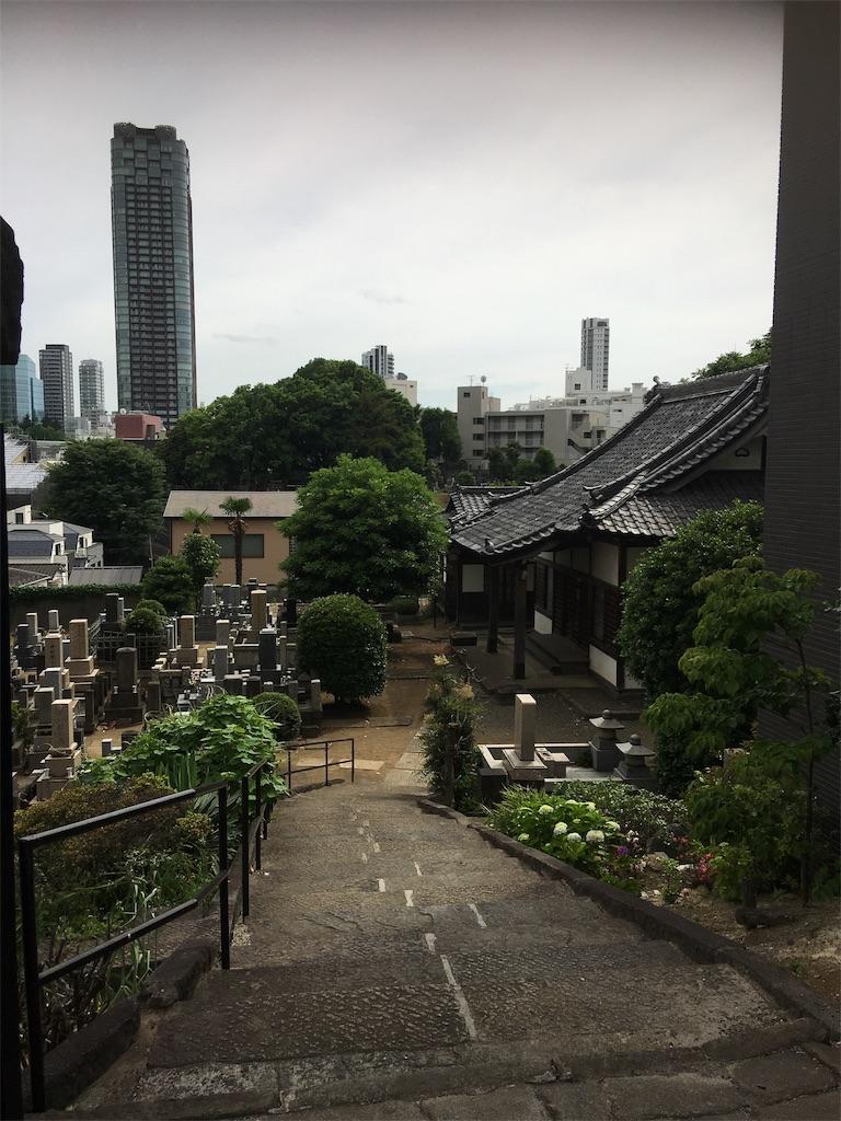 f:id:TokuheiKumagai:20190605214324j:image