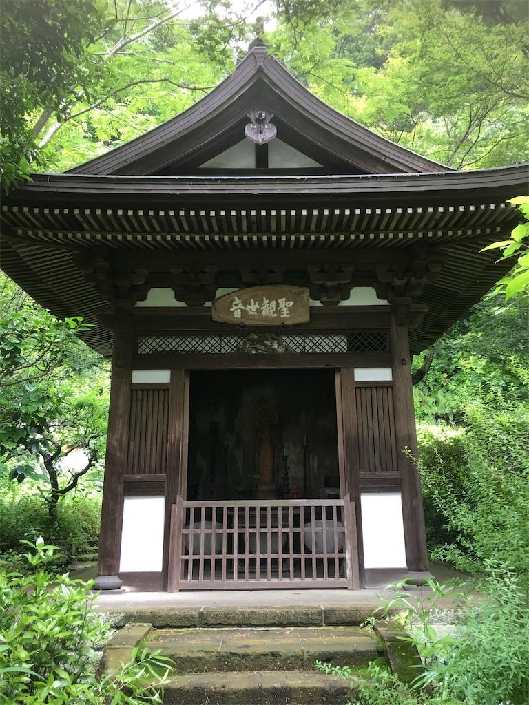 f:id:TokuheiKumagai:20190612221753j:image