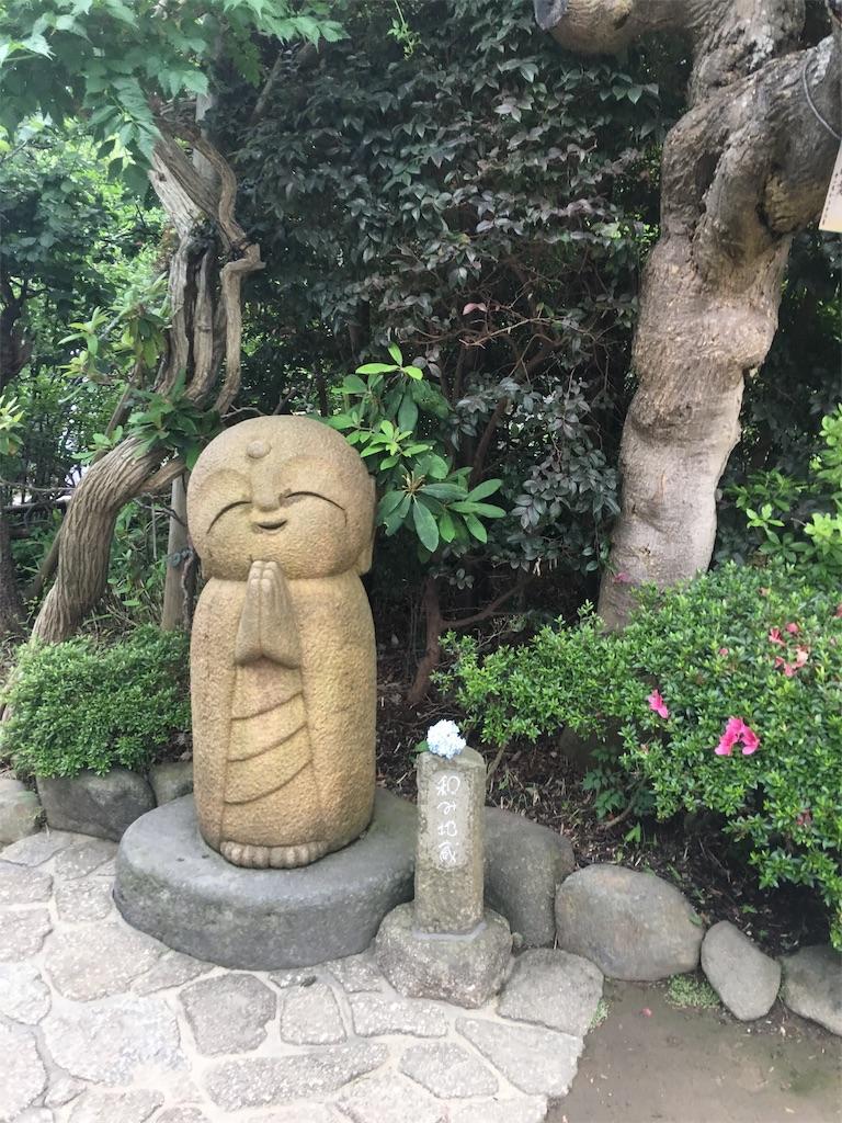 f:id:TokuheiKumagai:20190612221800j:image