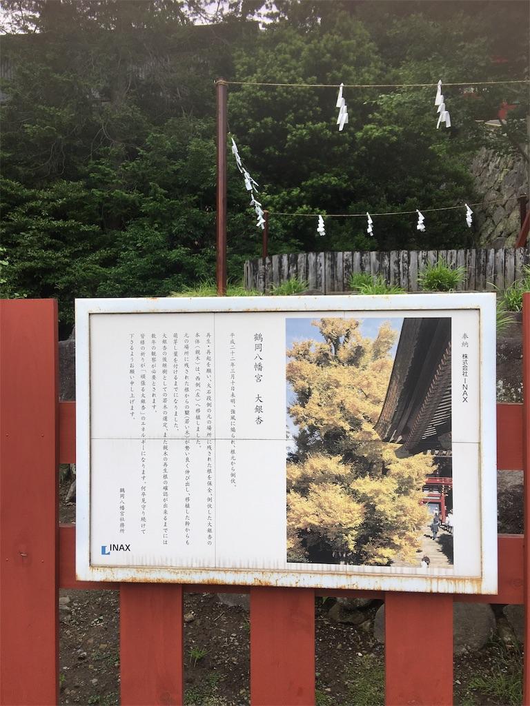 f:id:TokuheiKumagai:20190612222221j:image