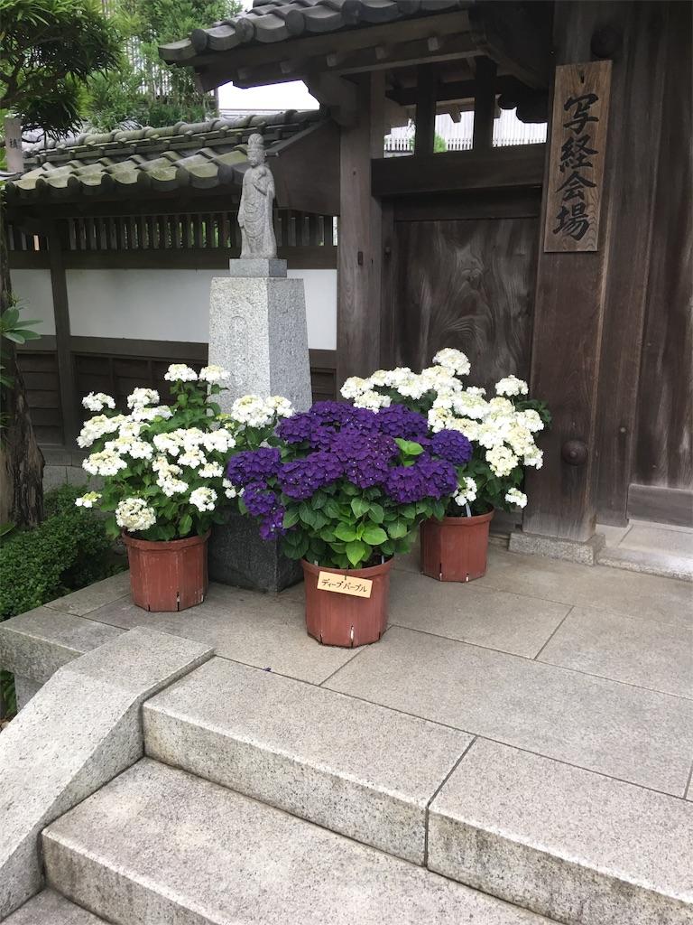 f:id:TokuheiKumagai:20190612222408j:image