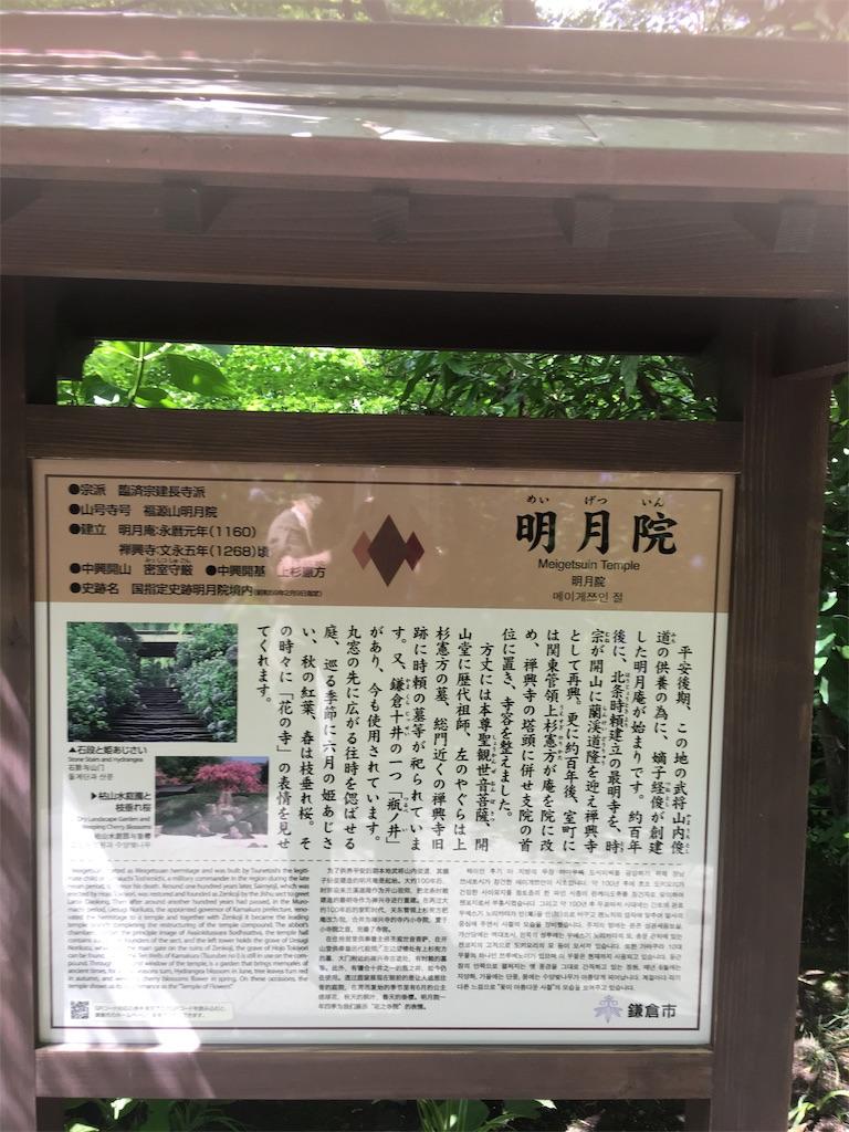 f:id:TokuheiKumagai:20190612222451j:image