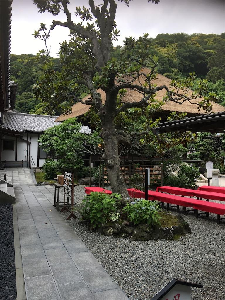 f:id:TokuheiKumagai:20190612222505j:image