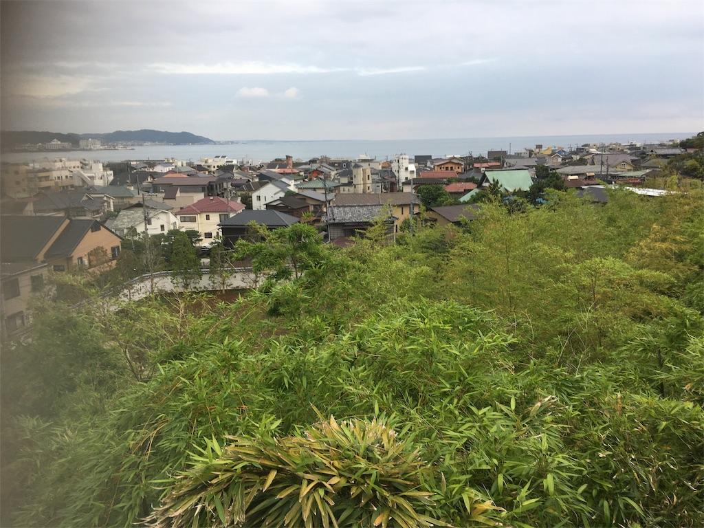 f:id:TokuheiKumagai:20190612222557j:image