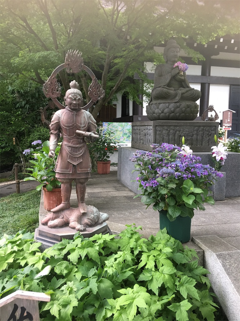 f:id:TokuheiKumagai:20190612222724j:image