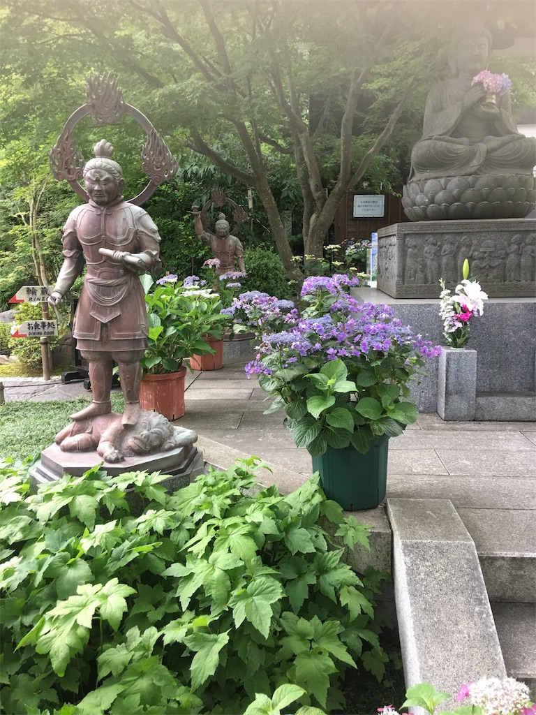 f:id:TokuheiKumagai:20190612222801j:image