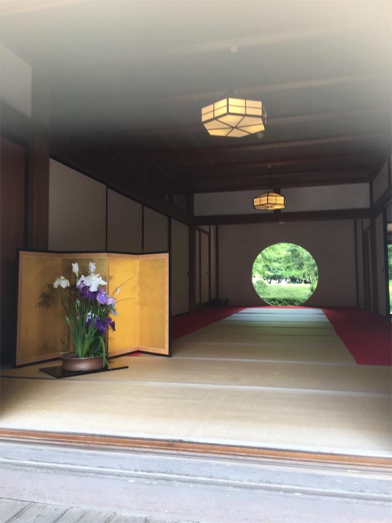 f:id:TokuheiKumagai:20190612222806j:image