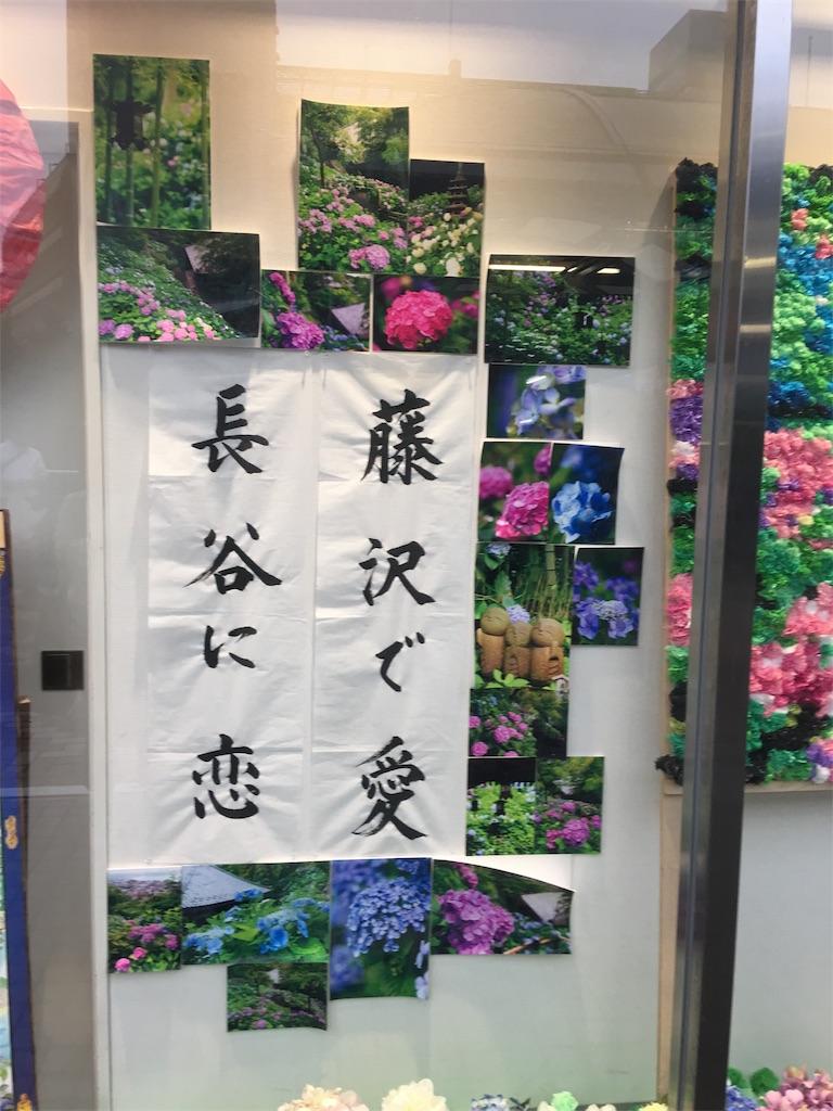 f:id:TokuheiKumagai:20190612222816j:image